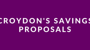 Croydon Council Survey
